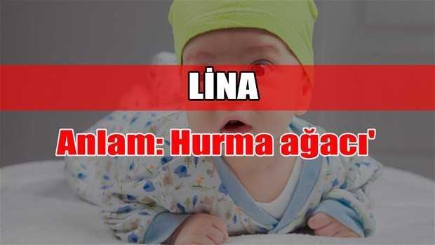 lina adının anlamı