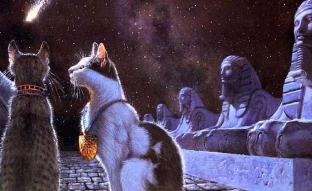 Kediler İçin Akıl Almaz Yas Yöntemi