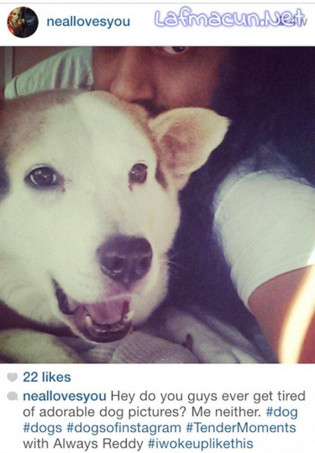 Benimde köpeğim var ve çok tatlıyız Selfiesi