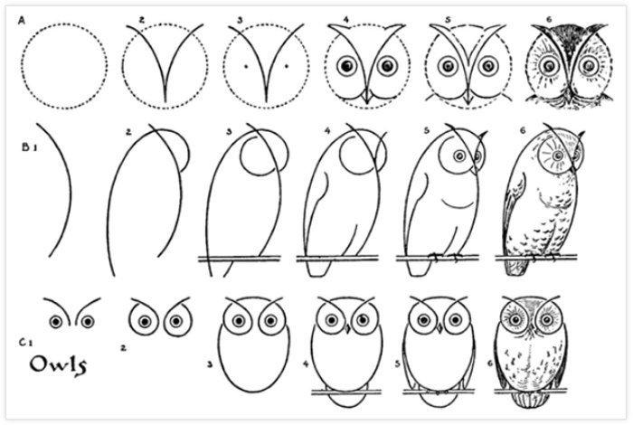 Pratik Baykuş Nasıl Çizilir