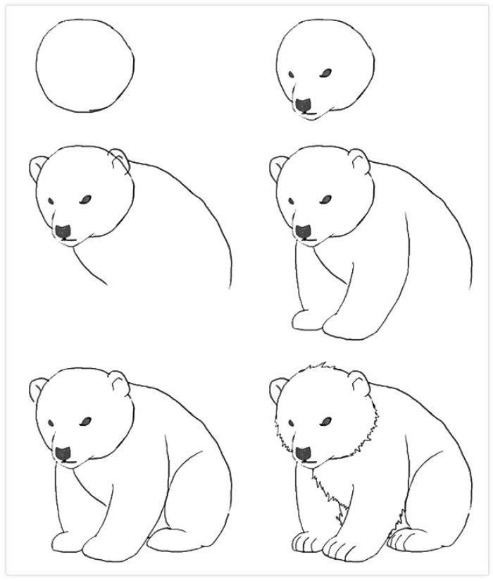 Pratik Ayı Nasıl Çizilir