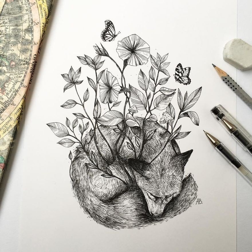 kara kalem tilki çizimi
