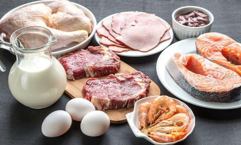 Protein Destekli Beslenme