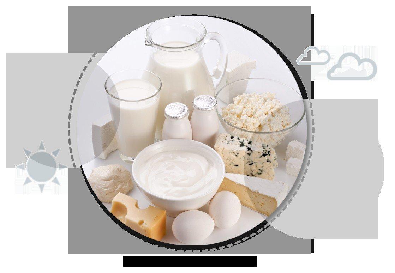 Hamilelikte Süt ve Süt Ürünleri İhtiyacı