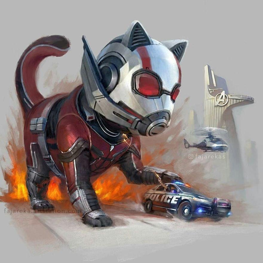 Ant-Cat