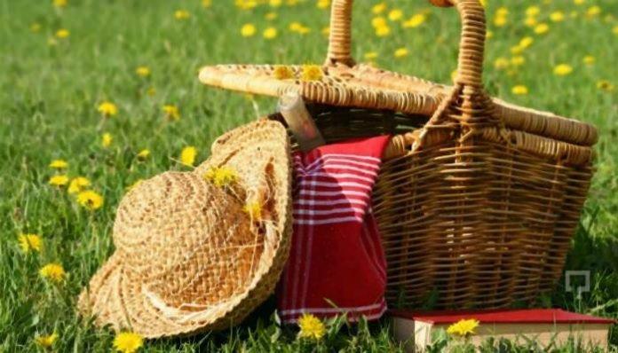Piknik Yapmak