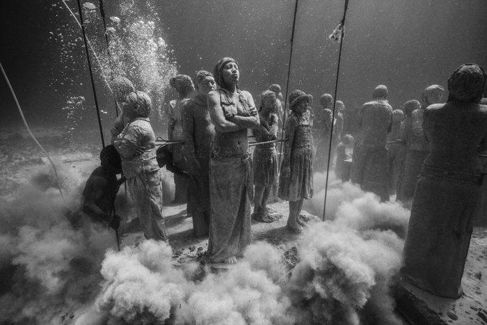 En Güzel Su Altı Fotoğrafları