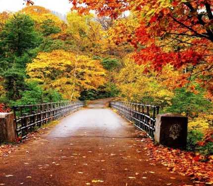 Ağva sonbahar
