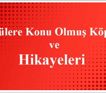 Türkülere Konu Olmuş Köprüler Ve Hikayeleri