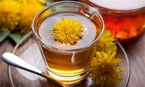 Karahindiba Çayı Faydaları
