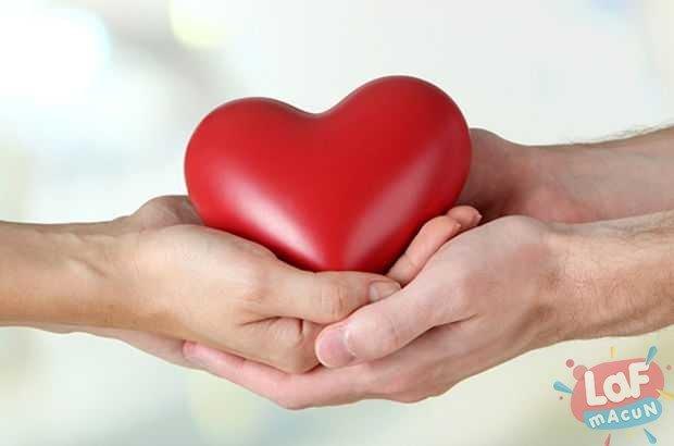 Organ Nakli Olanlarda Kişilik Değişiyor mu?