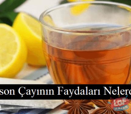 Anason Çayının Faydaları Nelerdir?