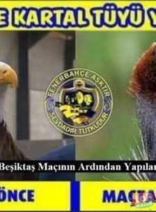 Fenerbahçe 3-1 Beşiktaş Maçının Ardından Yapılan Komik Capsler