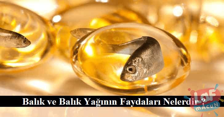 Balık ve Balık Yağının Faydaları Nelerdir ?