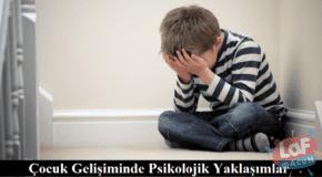 Çocuk Gelişiminde Psikolojik Yaklaşımlar