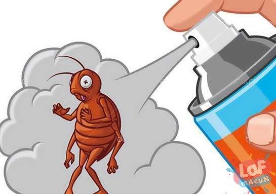evde Organik Böcek İlacı Yapımı