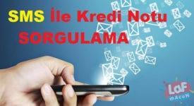 Mesaj ile Kredi Notu Öğrenme