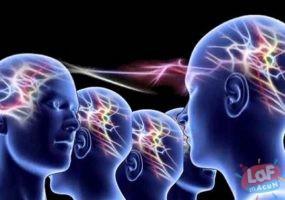 Ayna Nöronlar ve Empati Nedir?
