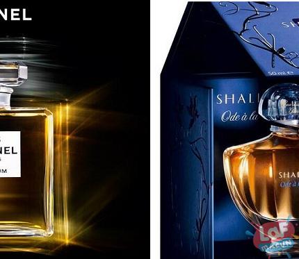 En İyi Bayan Parfümü Hangisidir, Bayan Parfüm Önerileri