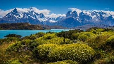 Photo of Vizesiz Gidebileceğiniz 10 Güney Amerika Ülkesi