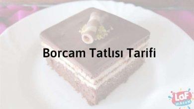 Photo of Borcam Tatlısı Tarifi