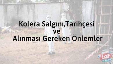 Photo of Kolera Salgını,Tarihçesi ve Alınması Gereken Önlemler